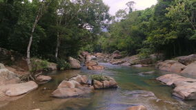 Rapid River in the tropical jungle. Nha Trang Vietnam stock footage