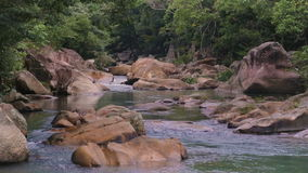 Rapid River in the tropical jungle. Nha Trang Vietnam stock video footage