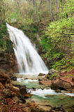 The rapid river and waterfall. Royalty Free Stock Image