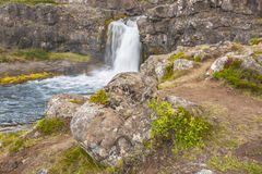 Rapid river - Westfjords, Iceland. Stock Photo