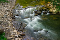 Rapid stream in green forest. Rapid stream flow along shore covered with stone. beautiful nature view in summer time Royalty Free Stock Photography