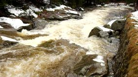 Rapid stream. Mountain river full of cold spring water. Slipper big stones and foamy chilly water around. Noise of huge of water. Rapid stream. Mountain river stock video footage