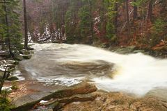 Rapid stream. Mountain river full of cold spring water. Slipper big stones and foamy chilly water around. Noise of huge of water. Royalty Free Stock Image