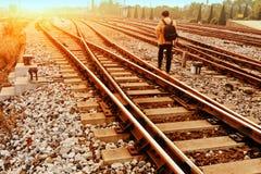 Rapid train runs on tracks Stock Images