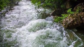 Rapid Water Of Mountain River Flowing Down. Pan shot of picturesque place - mountain river stream flowing down amidst lush green trees and bushes.  The shot was stock video footage