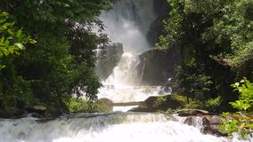 Rapid waterfall in deep jungle stock footage