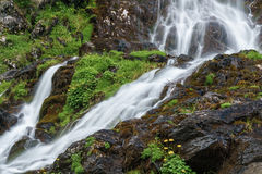 Rapid waters Royalty Free Stock Photos