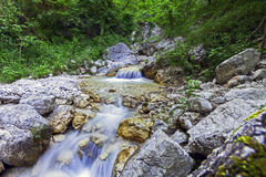 A rapid in a WWF oasi in long exposure. Shooting of a waterfall and watercourse in a WWF oasi Royalty Free Stock Images