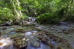 A rapid in a WWF oasi in long exposure. Shooting of a waterfall and watercourse in a WWF oasi Royalty Free Stock Photography