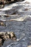 Rapide de l'eau Image libre de droits