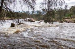 Rapide de précipitation de Bell photos libres de droits