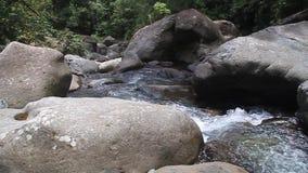 Rapide de Rio Hornito banque de vidéos