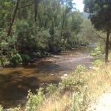 Rapide de rivière Images libres de droits