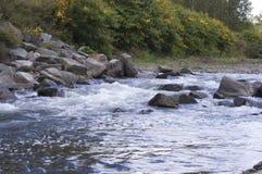 Rapide de rivière de Genessee Photographie stock