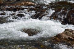 Rapide del fiume Immagini Stock