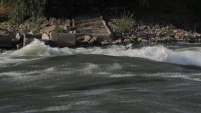Rapide del fiume, da pesca video d archivio