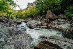 Rapide del fiume di Linville Fotografie Stock Libere da Diritti