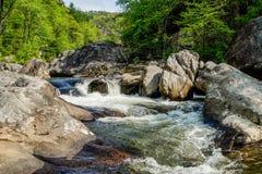 Rapide sul fiume di Linville Immagini Stock Libere da Diritti