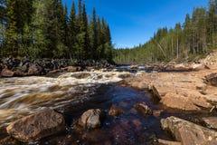 Rapide sur la rivière avec la forêt et la roche Photographie stock libre de droits