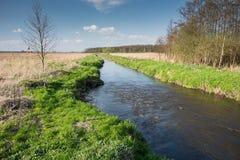 Rapidement actuel sur la rivière entrant dans la Pologne orientale images stock