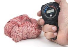 Rapidement réponse pour sauvegarder un cerveau mauvais avec l'ictus image libre de droits