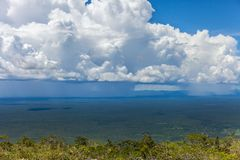 Rapidly approaching a tropical rainstorm passes through the rain forest Royalty Free Stock Photo