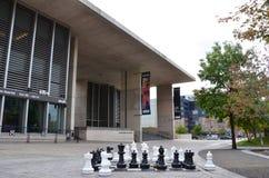 rapids музея искусства грандиозные Стоковые Изображения RF