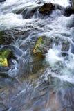 Rapids. Royalty Free Stock Photos