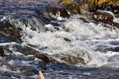 rapids Stockfoto