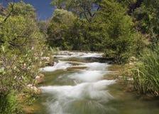 rapids Foto de Stock