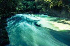 rapids Στοκ Εικόνα