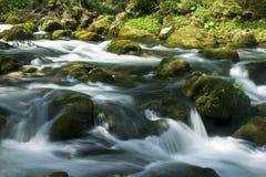 Rapids Fotografia de Stock Royalty Free