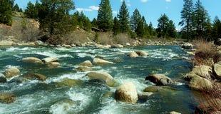 rapids Fotografia de Stock