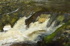 Rapids on Afon Mellte Stock Photos