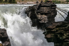Rapids on the Athabasca River Stock Photos