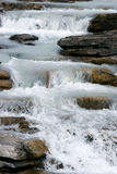 Rapids on the Athabasca River Royalty Free Stock Photo