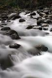 Rapids da água branca Foto de Stock Royalty Free