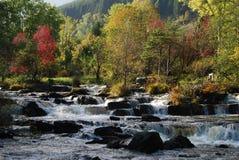 Rapids dans le fleuve des montagnes Photos libres de droits