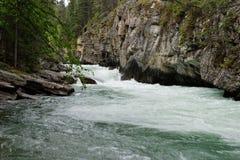 Rapids de fleuve photos libres de droits
