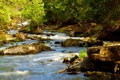 Rapids de fleuve photographie stock libre de droits