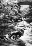 Rapids de Lyn del río Imagen de archivo libre de regalías