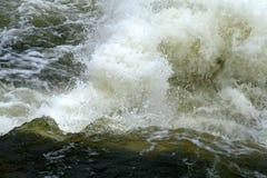 Rapids de Whitewater. Foto de Stock Royalty Free