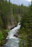 Rapids del fiume Immagini Stock