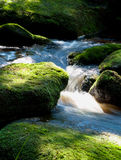 Rapids di Moutain fotografie stock libere da diritti