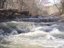 Rapids do rio Imagem de Stock