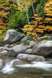 Rapids and fall color on the Swift River. New Hampshire Stock Image