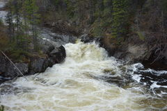 Rapids flowing fast down a mountain. Royalty Free Stock Photo