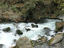 Rapids - Hermon Stream Stock Photography