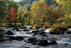 Rapids In Highland River Royalty Free Stock Photos