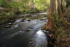 Rapids, Hillsborough River. The scenic Hillsborough River winds through a subtropical landscape, Hillsborough River State Park, Southwest Florida Royalty Free Stock Photo